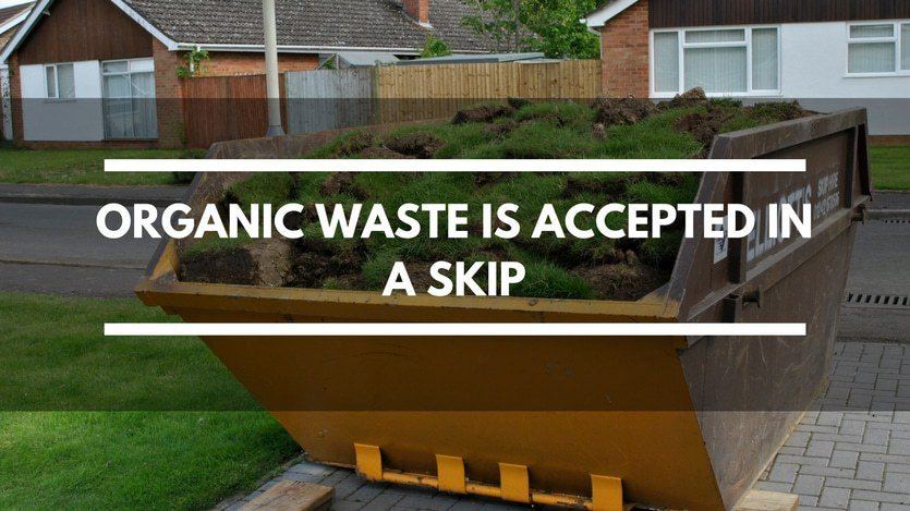 Skip Contents Organic Waste